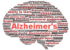 Ανακαλύφθηκε νέος μηχανισμός που παίζει ρόλο στη νόσο Αλτσχάιμερ